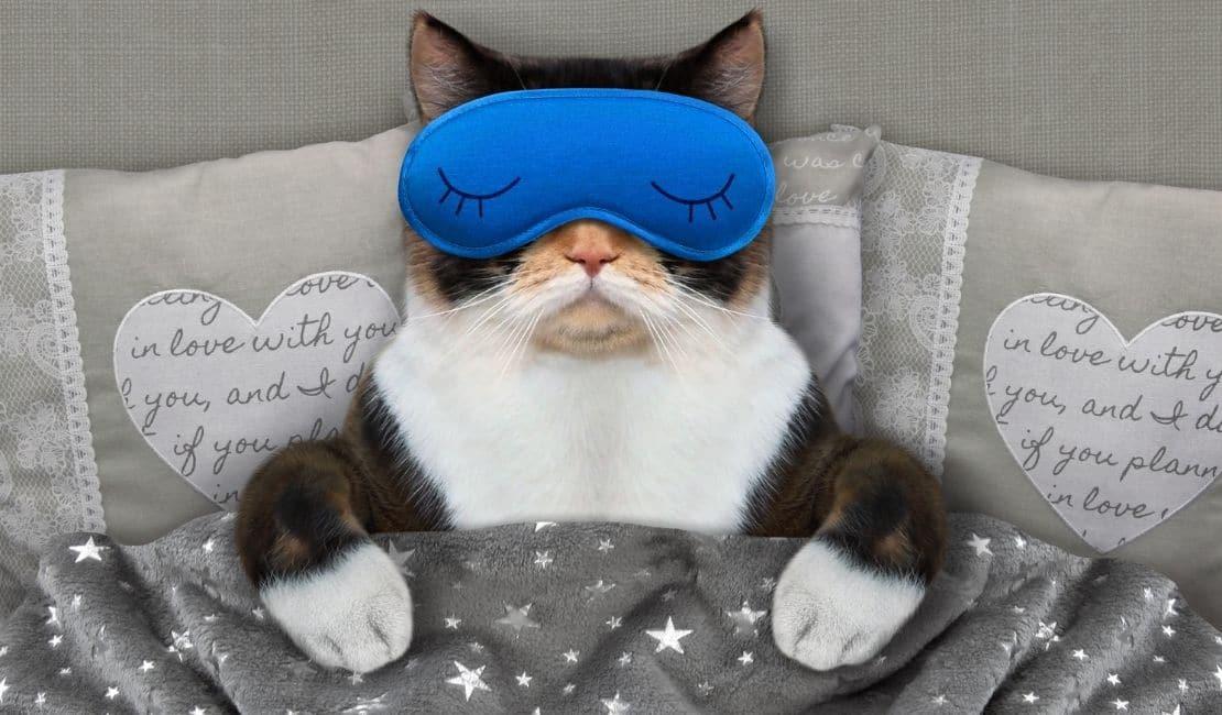 stresle baş etme yöntemleri düzenli ve saglıklı uyku